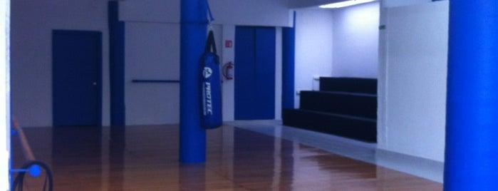 Okinawa Karate-Do GOTUM is one of Sitios que tal vez sean de utilidad.