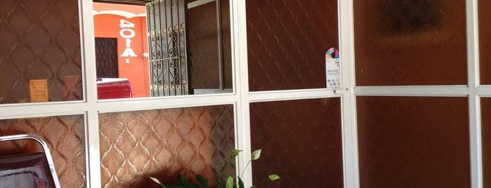 Consultorio Dr. Manuel Ruiz Ordaz is one of สถานที่ที่ Sandra ถูกใจ.