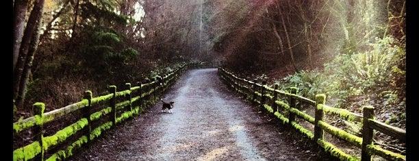 Westcrest Park is one of Seattle's 400+ Parks [Part 1].