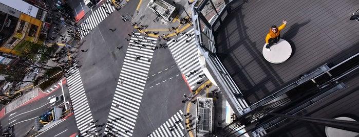 Crossing View is one of Vintage japan.