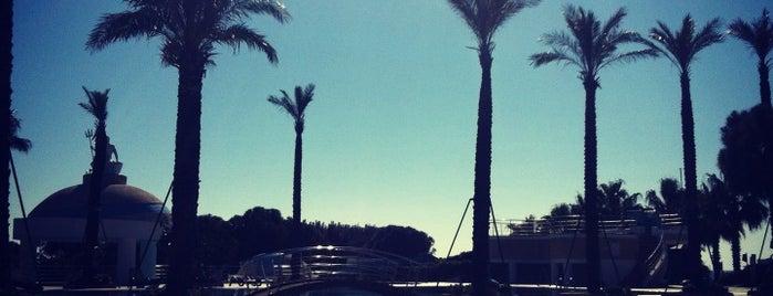 Limak Atlantis De Luxe Hotel and Resort is one of Omer 님이 좋아한 장소.