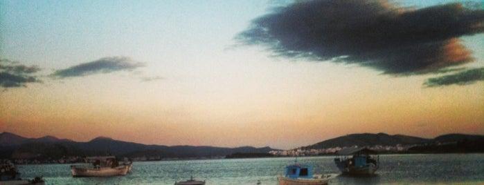 Άγιος Μηνάς Ψαροταβέρνα is one of Tempat yang Disukai George.
