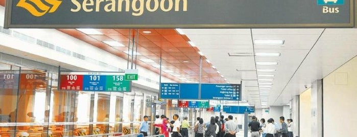 Serangoon MRT Interchange (NE12/CC13) is one of Singapore.