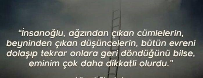 Adolis Konutları is one of Levent 님이 좋아한 장소.