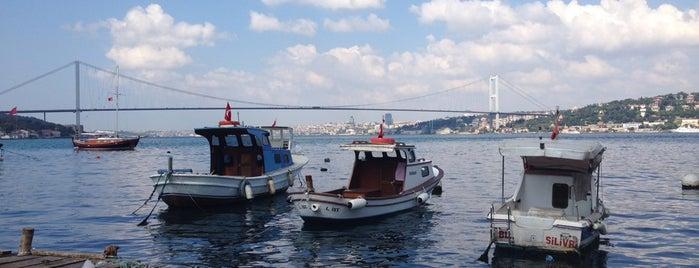 Tarihi Çınaraltı Aile Çay Bahçesi is one of Istanbul.