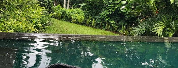 Damai Lovina Villas Bali is one of Tim's Favorite Restaurants & Bars around The Globe.