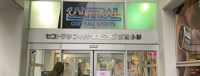 セントラルフィットネスクラブ 武蔵小杉 is one of セブンティーンアイスがある場所.