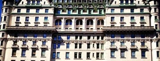 プラザホテル is one of New York Attractions.