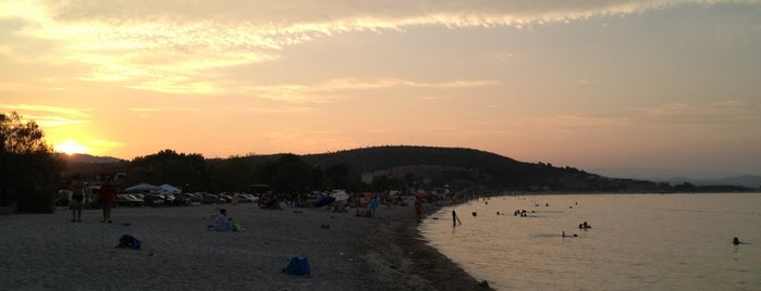 Livrochio Beach is one of Chalkidiki.