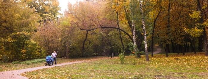 Парк «Кинь-Грусть» is one of สถานที่ที่บันทึกไว้ของ Ника.