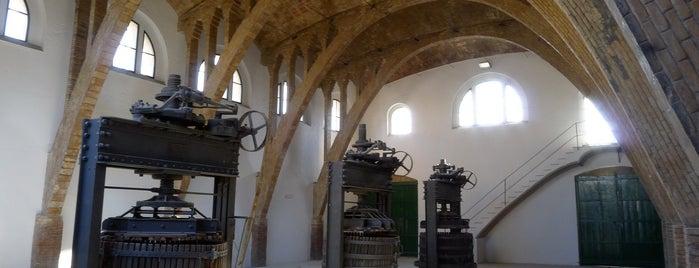 Agrobotiga Celler Cooperatiu Gandesa is one of EU Prize for Cultural Heritage 2014.