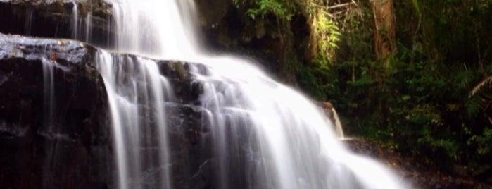 อุทยานแห่งชาติปางสีดา (Pangsida National Park) is one of สระบุรี, นครนายก, ปราจีนบุรี, สระแก้ว.