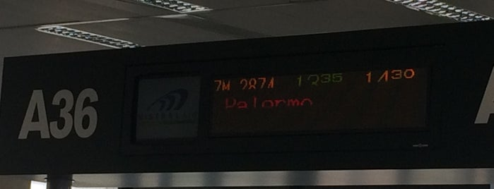 Gate A36 is one of internatiınal airport.