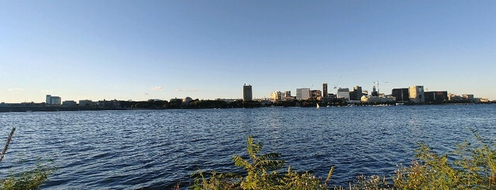Running on the Charles is one of boston ?.