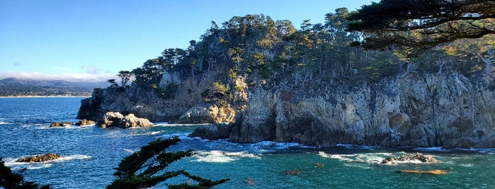 Cypress Grove Trail is one of HWY1: Santa Cruz to Monterey/Carmel.