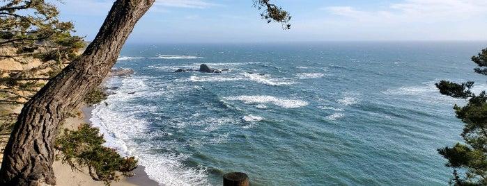 Greyhound Beach is one of California Coast.