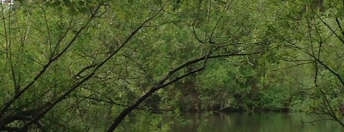 Twin Ponds Park is one of Anastasia 님이 저장한 장소.