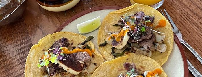 Ruta Oaxaca is one of Plans.