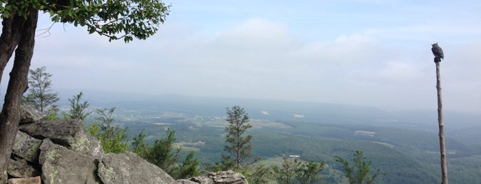 Hawk Mountain Sanctuary is one of Parks & Trails.
