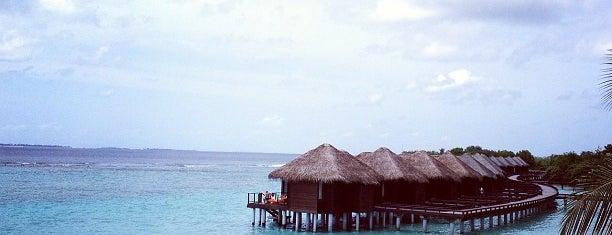 Sheraton Maldives Full Moon Resort & Spa is one of Richard : понравившиеся места.