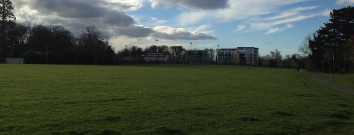 Stillorgan Heath Exercise Park is one of airgylさんのお気に入りスポット.