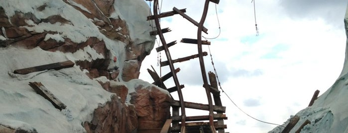 Expedition Everest is one of Locais curtidos por Aline.