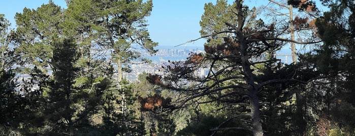Sequoia Bayview Trail is one of East Bay.
