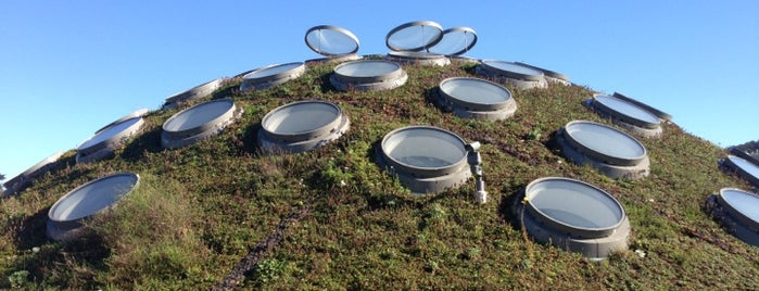 The Living Roof is one of San Francisco.