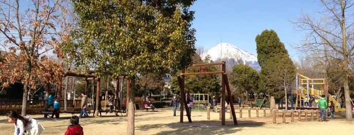 富士西公園 is one of inuさんのお気に入りスポット.