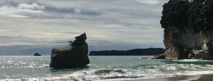 Cathedral Cove is one of Nova Zelândia.