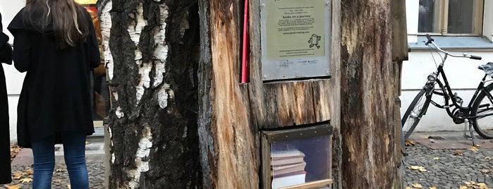 Bücherbaum is one of 1 | 111 Orte in Berlin die man gesehen haben muss.