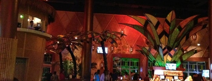 Bongo's is one of Nightlife in Miami.