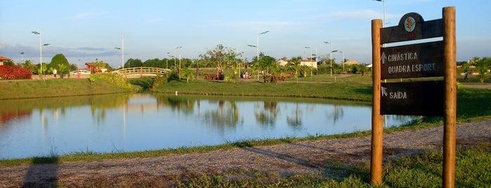 Parque Da Cidade is one of Porto Velho, Orgulho Amazônia Ocidental.