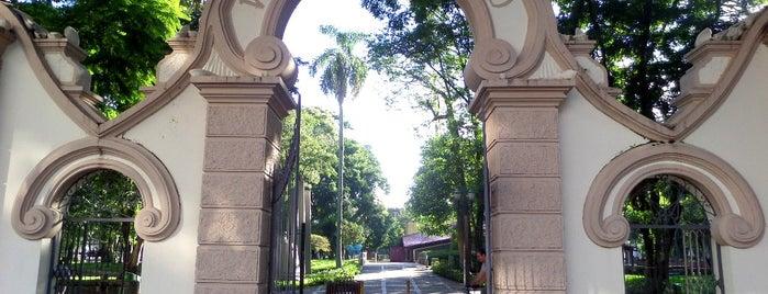 Passeio Público is one of Curitiba, Capital do Paisagismo e Bom Gosto.
