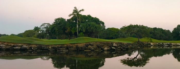 Hard Rock Golf Club Riviera Maya is one of Orte, die Felipe gefallen.