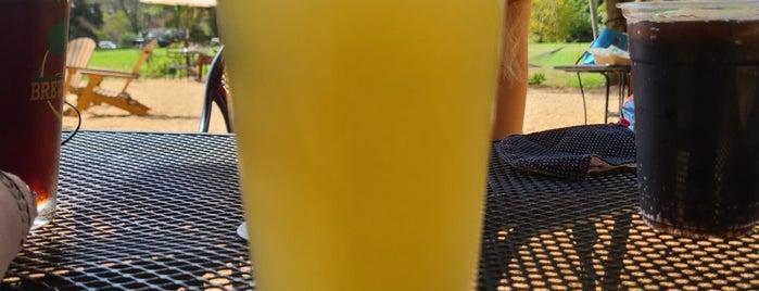 Brewing Tree Beer Company is one of Rachel'in Beğendiği Mekanlar.