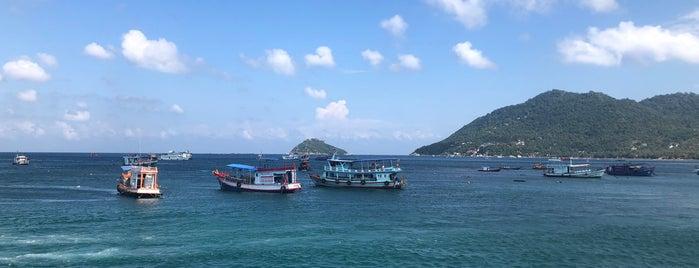 เกาะเต่า is one of สถานที่ที่ Alan ถูกใจ.
