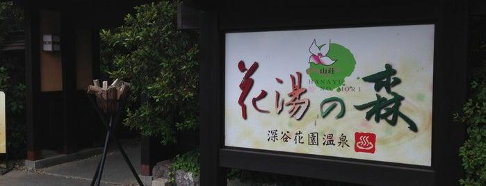 深谷花園温泉 花湯の森 is one of State of Gummar.