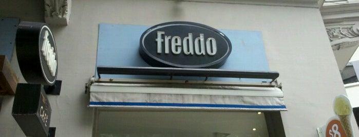 Freddo is one of Lieux qui ont plu à Paula.