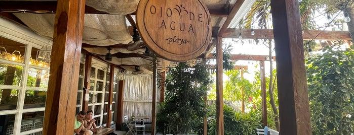 Ojo De Agua is one of Playabdel Carmen.
