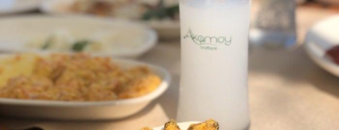 Akamoy Otel & Restaurant is one of Omur Akkor.