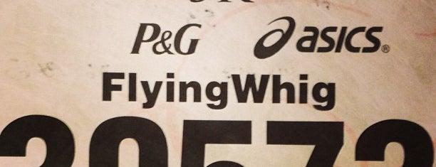 Flying Pig Marathon Finish Swine is one of USA Cincinnati.