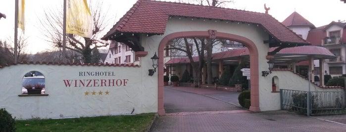 Ringhotel Winzerhof is one of begenilerim.