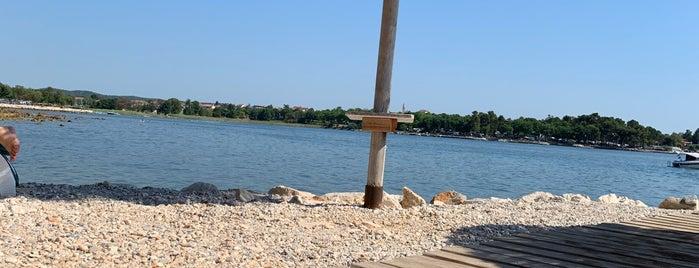 Polidor beach bar is one of Croatia top spots.