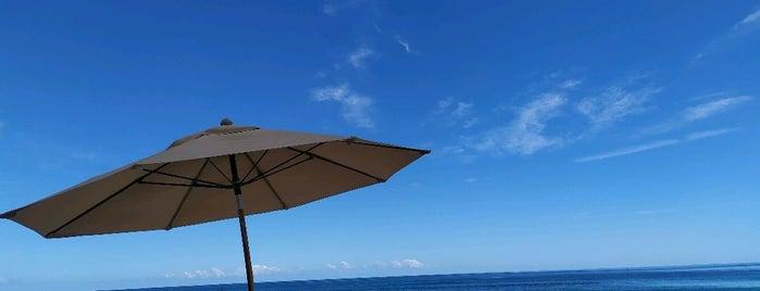 Playa Canek is one of Celal 님이 좋아한 장소.