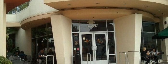 Starbucks is one of Locais salvos de Stewart.