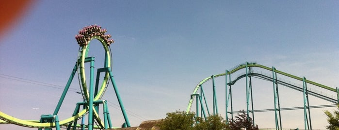 Raptor is one of Conquering Cedar Point.