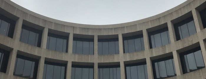 Alexander Calder Room is one of Dessi : понравившиеся места.
