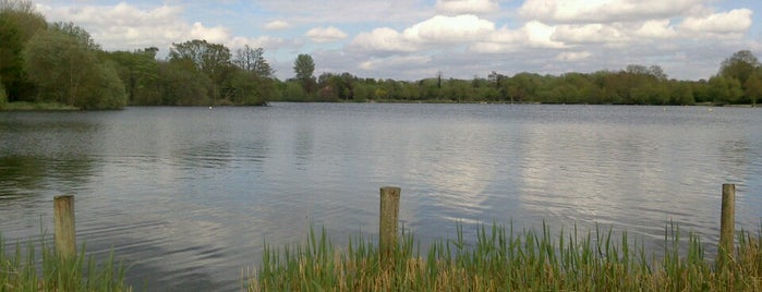 Aquadrome Local Nature Reserve is one of UK.