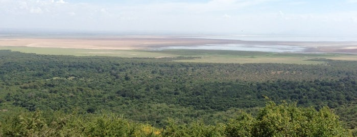 Lake Manyara National Park is one of Lugares favoritos de Jean-François.